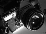 medium_Copie_de_PhotosLP_P1140052.JPG