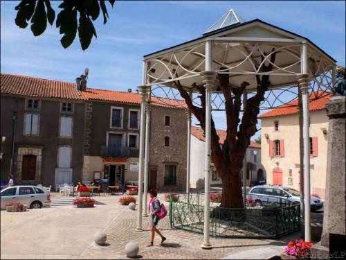 carnet de voyage été 2012,le caylar,arbre,michel chevray,sculpture