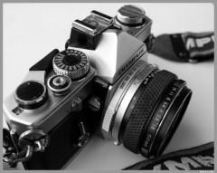 OM1-PhotosLP.jpg