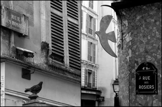 Rue des Rosiers-PhotosLP Fallot (3).jpg