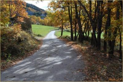 Quand la route devient chemin-PhotosLP Fallot-2010 (2).jpg