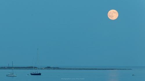lune,bleu,photo