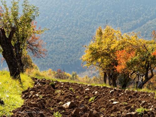 automne,annot,un blog revisité,méailles,entrevaux