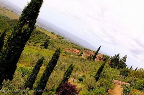 San Donatino-PhotosLP Fallot (6).JPG