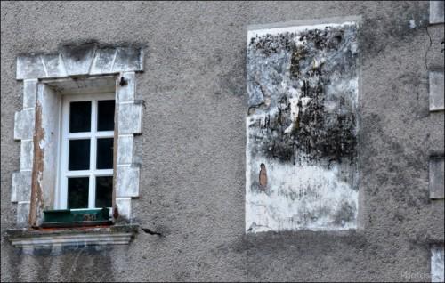 Chemin d'Entrevaux-PhotosLP Fallot (23).jpg