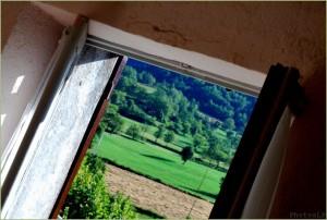 Fenêtre-PhotosLP- 2010 (6).jpg