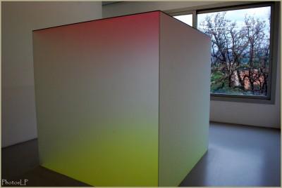 Quand la Géométrie devient Art-Photo LP Fallot.jpg