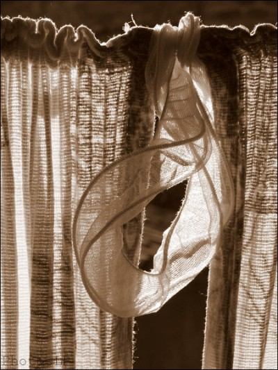 Méailles-Printemps 2007-PhotosLP Fallot (3).jpg