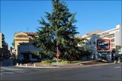 Centre ville de Cagnes vu du square Bourdet-PhotosLP Fallot.jpg
