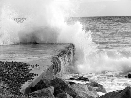 NICE FEVRIER 2012-LP FALLOT   (27).jpg