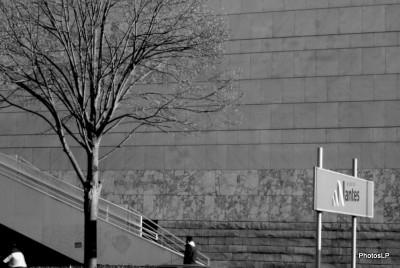 Nantes-PhotosLP.JPG