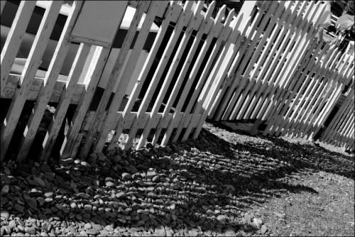 Riviéra-PhotosLP Fallot  (7).jpg