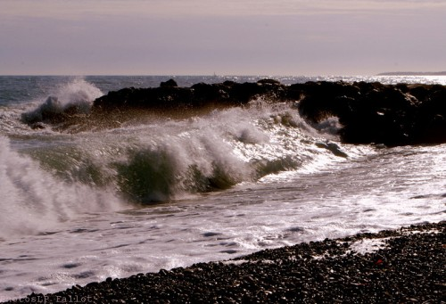 La mer changeant-PhotosLP Fallot (3).jpg