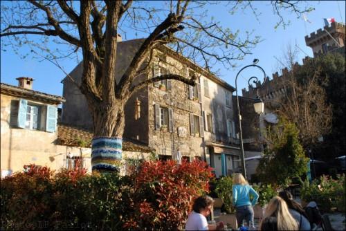 Arbres-Tricot-Haut de Cagnes-Avril 2011-PhotosLP Fallot (10).jpg