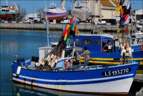 Bateau pêche port des Sables d'Olonne.jpg