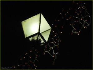 Montée de la Bourgade-Cagnes le 17 décembre 2010-PhotosLP Fallot.jpg