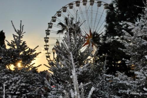 Nice -décembre 2009-PhotosLP.JPG