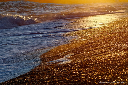 La mer en hiver-PhotosLP Fallot (3).jpg