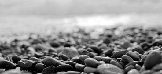 La mer en hiver-PhotosLP Fallot (4).jpg