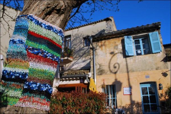 Arbres-Tricot-Haut de Cagnes-Avril 2011-PhotosLP Fallot (11).jpg