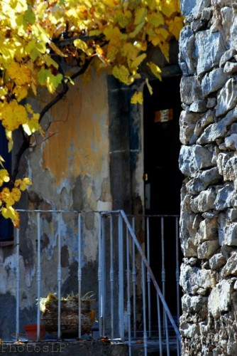 Automne en Haute Provence-PhotosLP Fallot -S1 (8).jpg