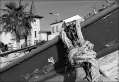 Pêche à la poutine au Cros de Cagnes-PhotosLP Fallot (5).jpg