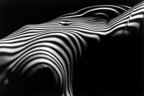 Nu zebre-2007 de Lucien Clergue.jpg