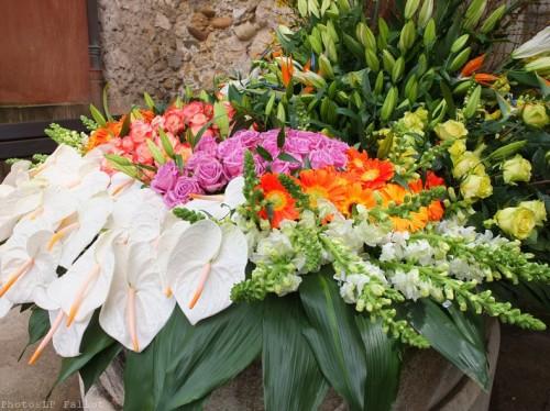 Symphonie Florale-PhotosLP Fallot (19).jpg