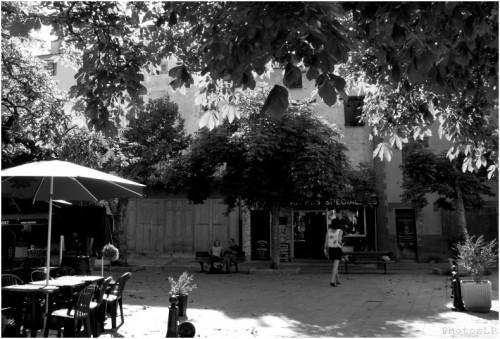 Haute-Provence- Louis-Paul Fallot-2010 (2).jpg