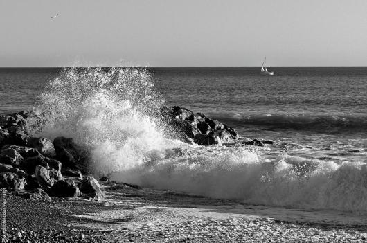 La mer en hiver-PhotosLP Fallot (1).jpg