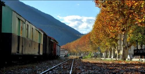Automne en Haute Provence-PhotosLP Fallot -Série 2  (2).jpg
