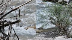Eau en Provence-PhotosLP Fallot-2010 (2).jpg