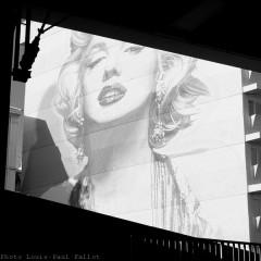 Cannes Festival film-PhotosLP Fallot (1).jpg