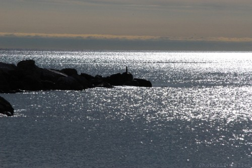 mer,cagnes sur mer,photo;arthur rimbaud,hervé hamond,instant présent