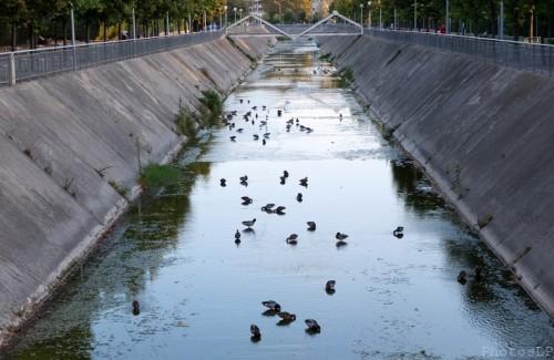 La Cagnes sans eau-PhotosLP Fallot (3).jpg