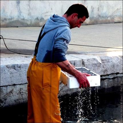Pêche à la poutine au Cros de Cagnes-PhotosLP Fallot (4).jpg