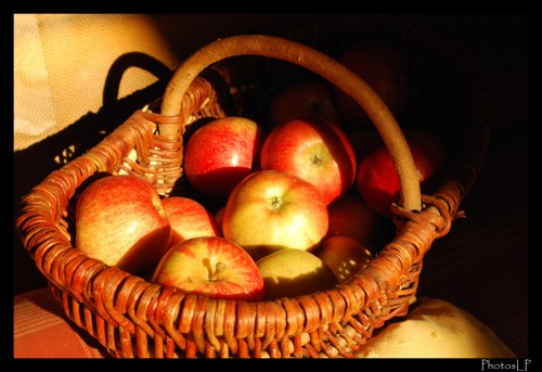 Pommes-PhotosLP.jpg