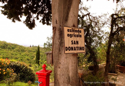 San Donatino-PhotosLP Fallot (7).JPG