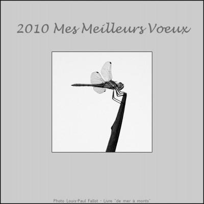 Carte de voeux 2010-LP Fallot.jpg