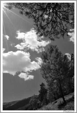 Haute-Provence-PhotosLP-2008.jpg
