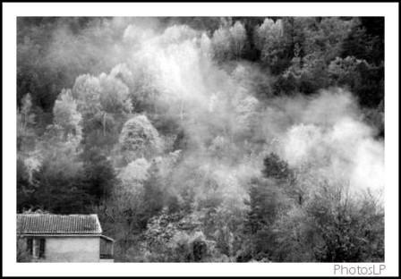 Automne enHaute-Provence-PhotosLP-2008.jpg