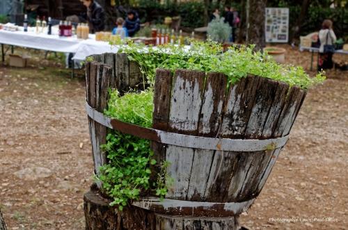Artgriculture-PhotosLP Fallot (4).jpg