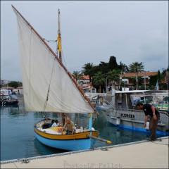 Voile latin au port du Cros-Aventure Pluriel-PhotosLP Fallot-Mai 2011.jpg