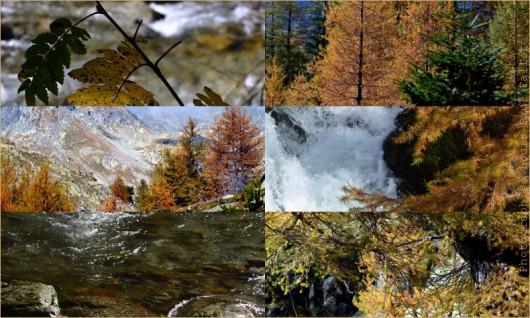 Vésubie en automne-PhotosLP Fallot.jpg