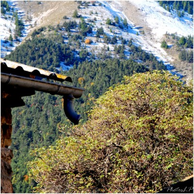 Première neige-PhotosLP-octobre 2010 (2).jpg