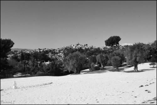 Parc Renoir à Cagnes-PhotosLP Fallot.jpg