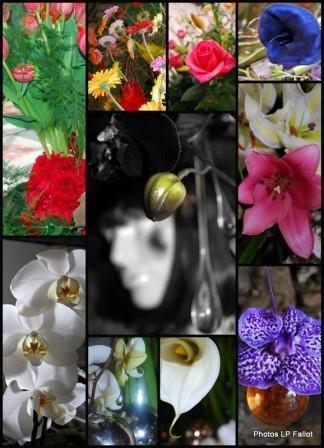 Symphonie Florale au Haut de Cagnes-Avril 2009-Photo LP Fallot - Copie.jpg