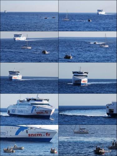 Arrivée du ferry NGV Liamone au port de Nice-Photos LP Fallot.jpg