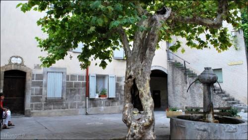 Chemin d'Entrevaux-PhotosLP Fallot (17).jpg