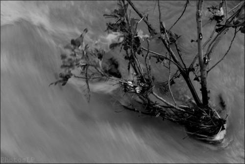 Déluge-La Cagne-PhotosLP Fallot    (4).jpg
